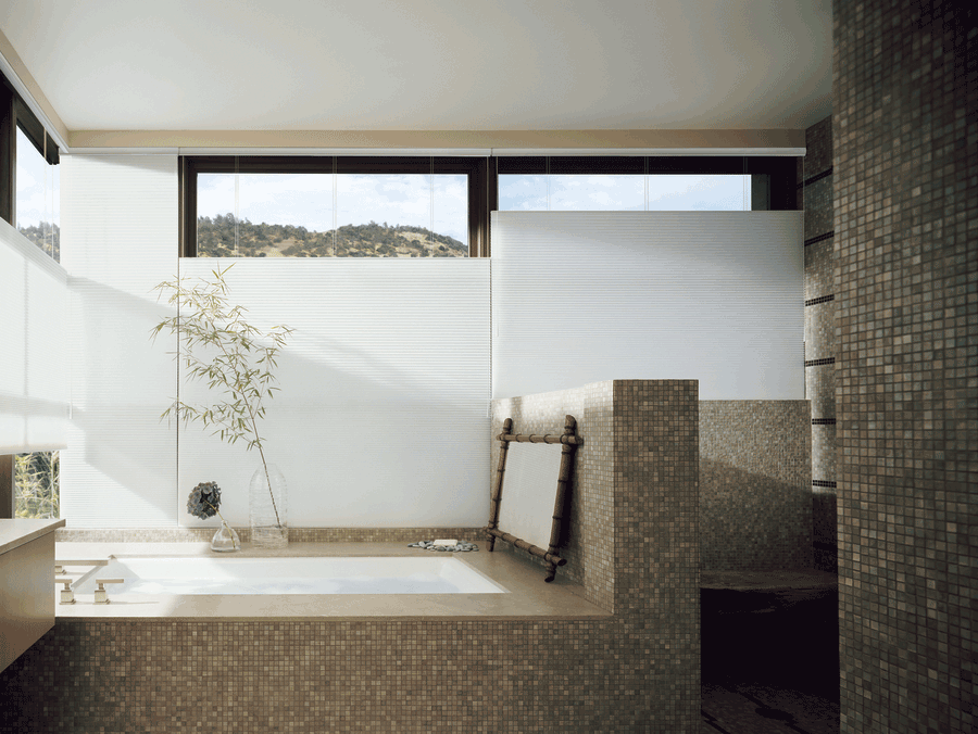 top down shades bathroom solutions Hunter Douglas Maple Grove 55369