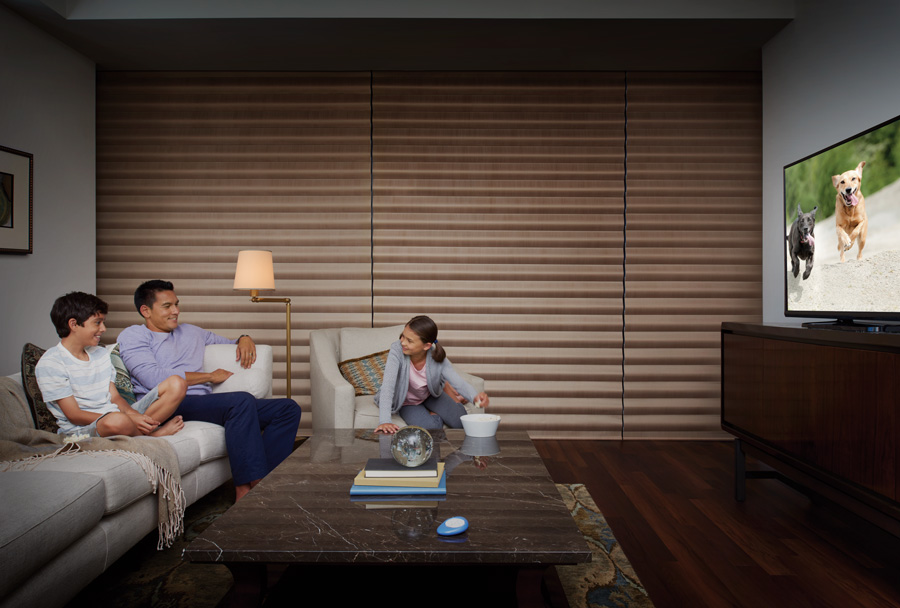 media room black out solutions Duette Honeycomb shades Hunter Douglas St Paul 55331