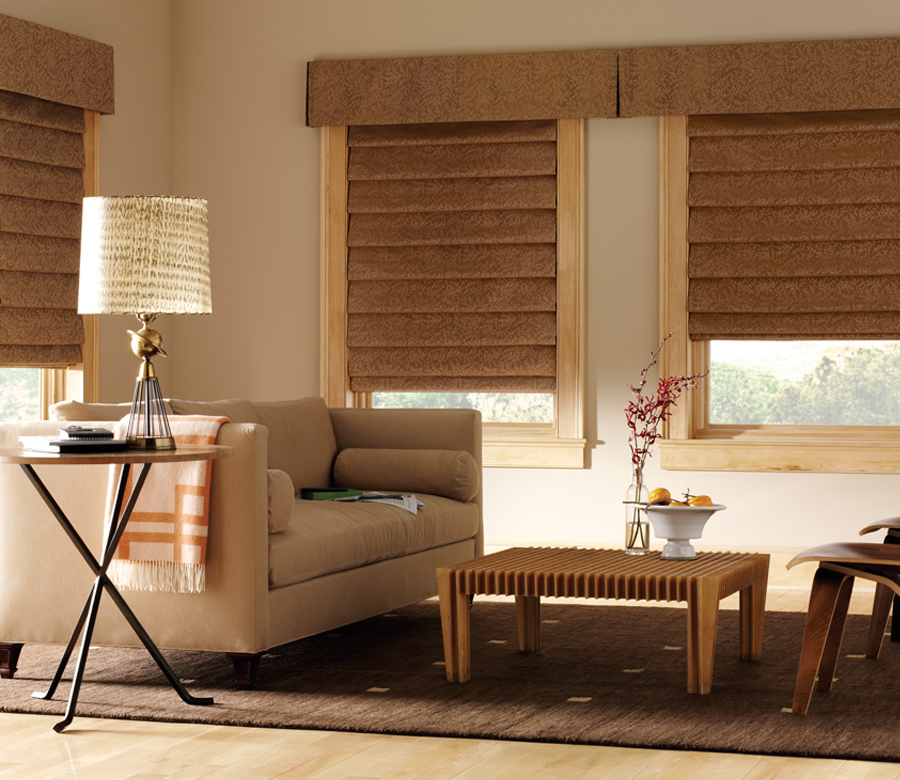 living room Hunter Douglas design studio custom roman shades minneapolis st paul 55113