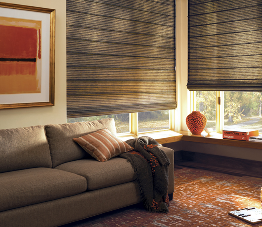 brown living room Hunter Douglas design studio custom roman shades Maple Grove 55369
