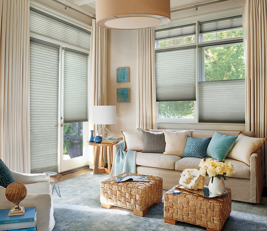 duette honeycomb shades french door blinds with top down bottom up shades St paul Mn