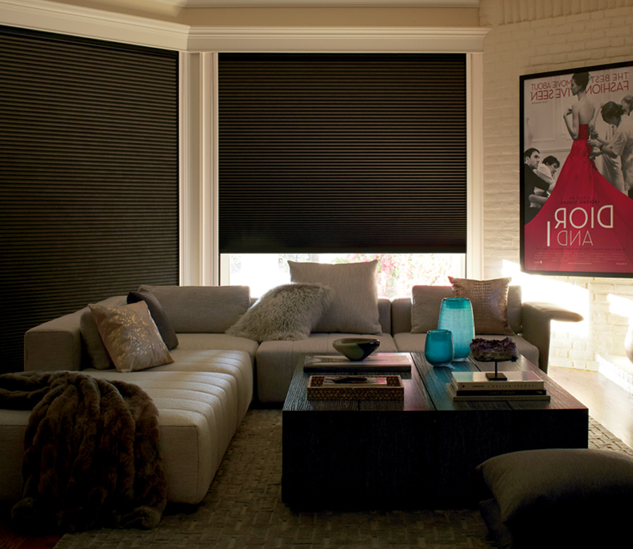 duette shades lightlock blackout shades St paul MN