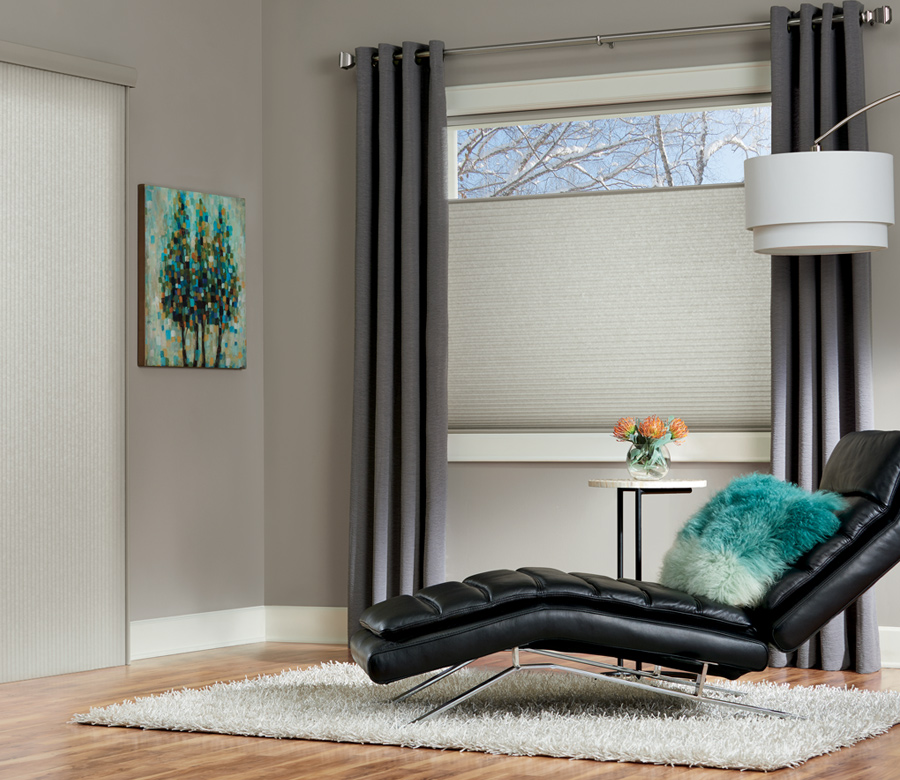 duette cellular shades for doors and top down bottom up shades St paul MN
