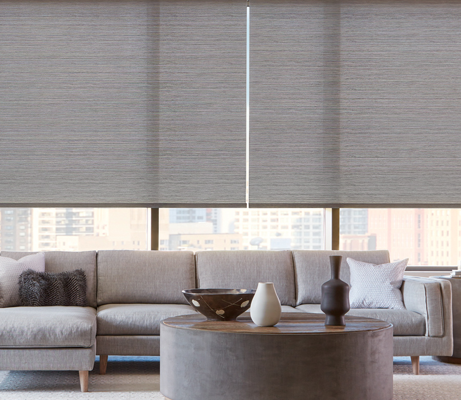 Designer Roller Shades Amp Screen Shades Hunter Douglas St