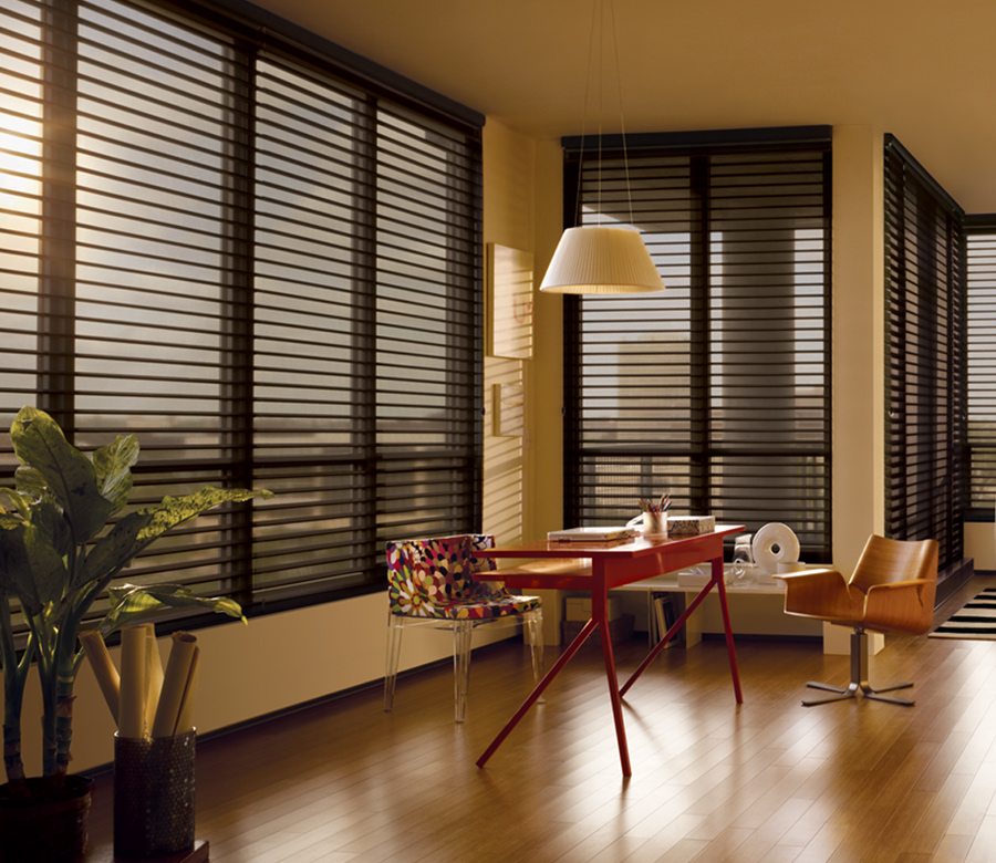 Hunter Douglas silhouette window shades Maple Grove MN