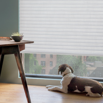 Hunter Douglas pet safe blinds and shades Minneapolis St Paul 55113