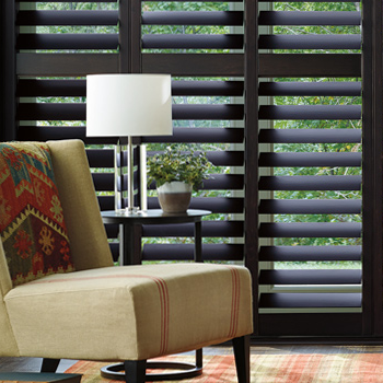 Hunter Douglas energy efficient window treatments Maple Grove 55369