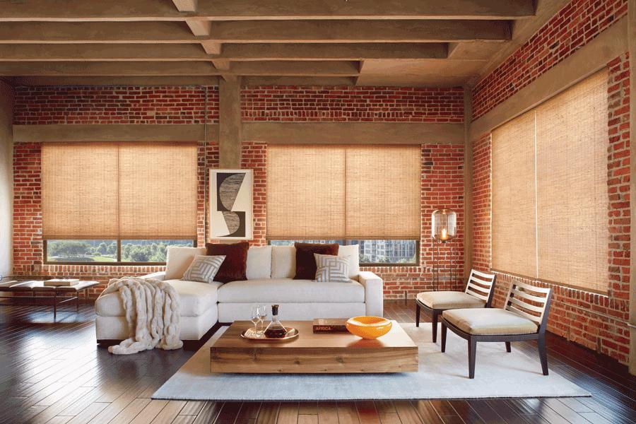 living room naturally modern Hunter Douglas Provenance Woven Wood Shades St Paul 55113