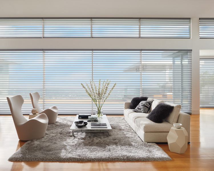 Hunter Douglas silhouette shades as smart shades Minneapolis St Paul MN