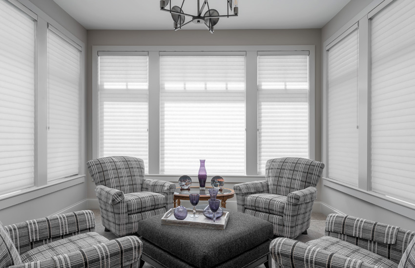Hunter Douglas silhouette shades living room sheer shades St Paul 55113