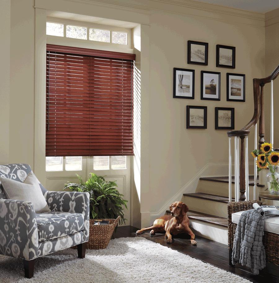 horizontal wood pet safe cordless blinds for dog owners Hunter Douglas St Paul 55113
