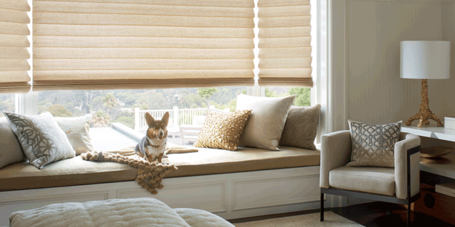 vignette modern roman shades for dog owners Hunter Douglas St Paul 55113