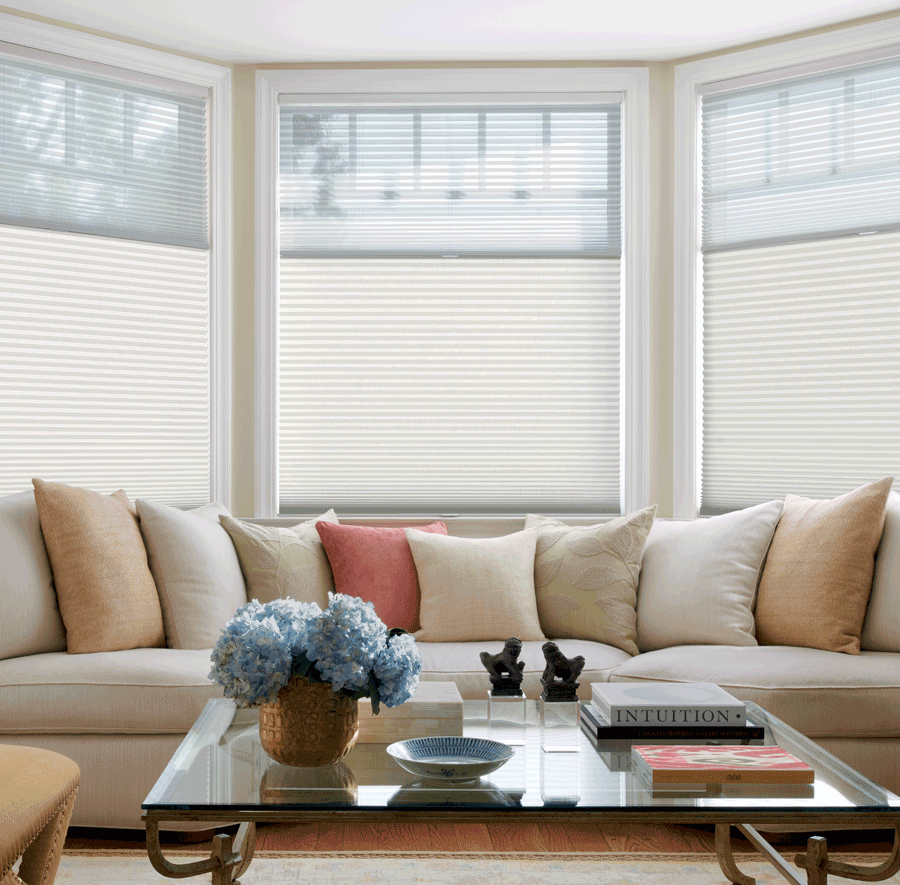 living room large window top down shades honeycomb duette shades Hunter Douglas St Paul 55113