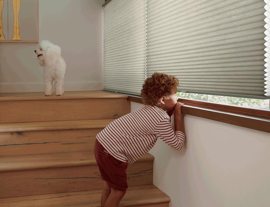 cordless child safe blinds Hunter Douglas St Paul 55113