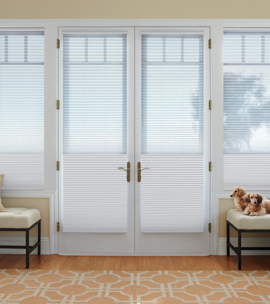 dual shades on french doors Maple Grove 55369