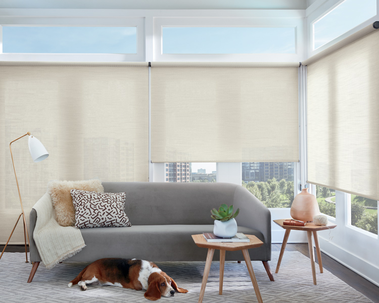 contemporary living room with corner windows covered with alustra roller shades Minneapolis MN