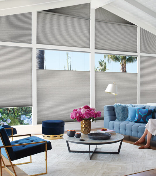 Duette honeycomb shades for large angled windows Maple Grove MN