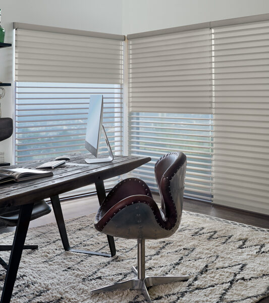 city office with large windows and hunter douglas duolite dual shades on silhouette window shades in St Paul 55113