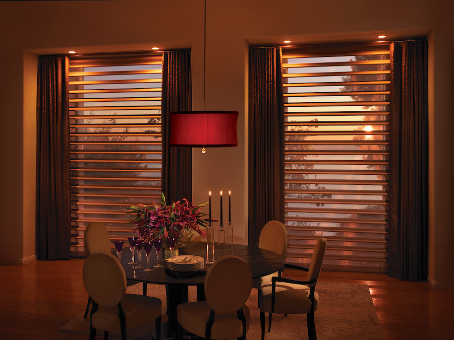 Pirouette shades allow light filtering during the changing season in Minneapolis.