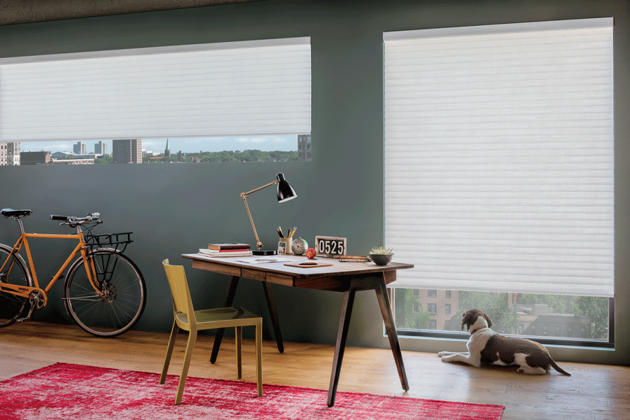 Sonnette roller cellular shades complete any work space.