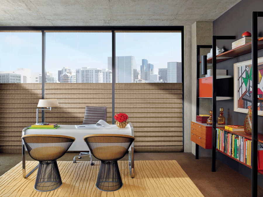 Add top down bottom up window treatments to your Minneapolis home for added productivity.