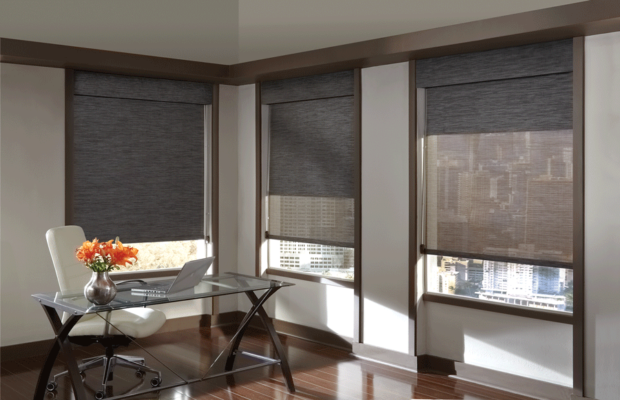 Dual shades are perfect for controlling any lighting situation in your Minneapolis home.