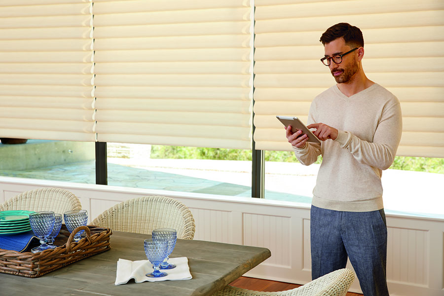 Roman shades with PowerView technology.