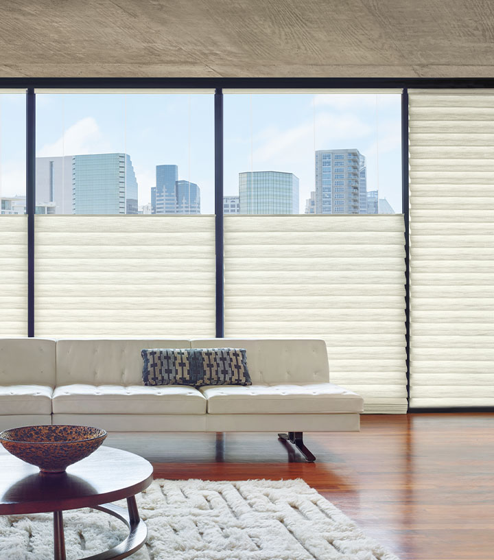 Minneapolis MN condo with floor to ceiling roman shades