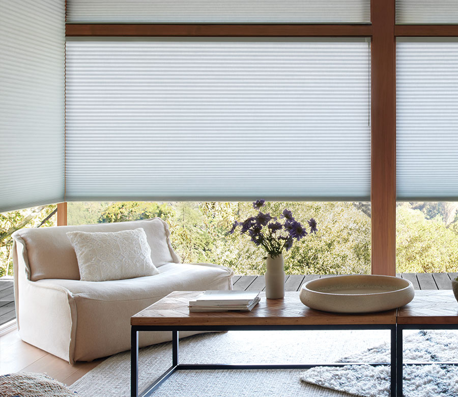 duette honeycomb shades on large windows in Little Canada MN
