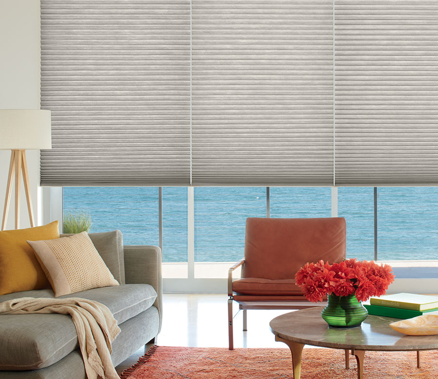 living room in Burnsville MN with Duette Honeycomb shades