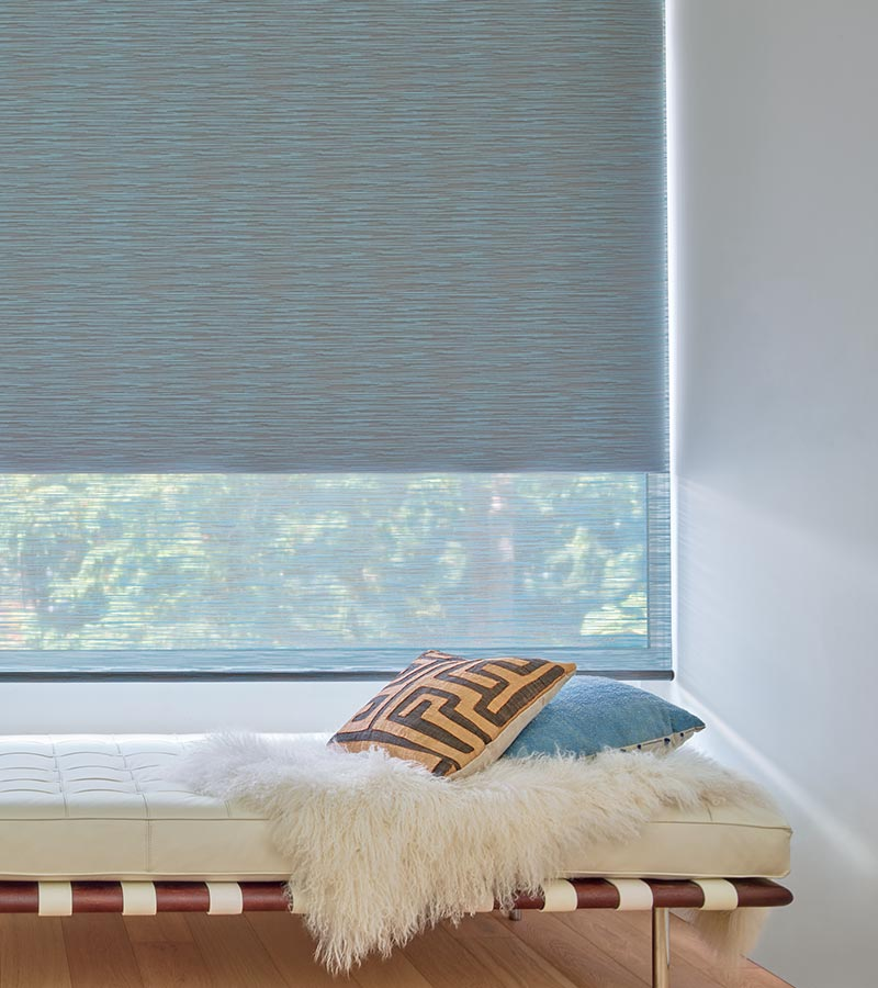 blue roller shades with duolite for dual shades in Maple Grove MN