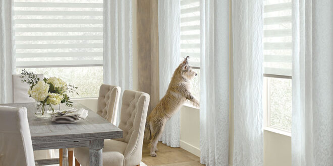pet friendly window coverings for Minneapolis MN homes