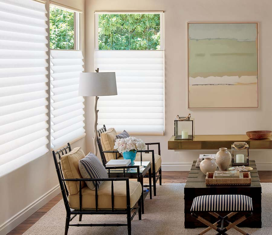beige living room with white shades in St. Paul 55113